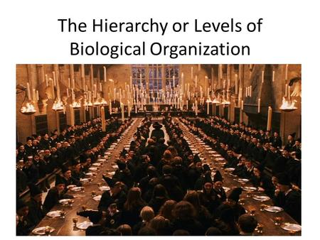 The Hierarchy or Levels of Biological Organization