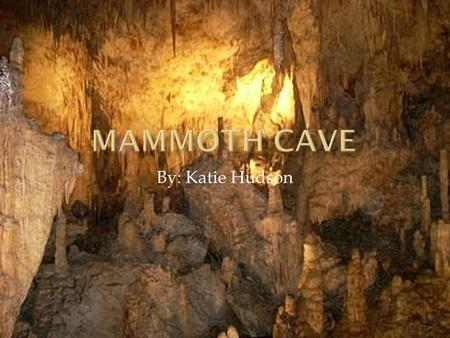 By: Katie Hudson. Mammoth Cave was established July 1941 to keep the cave system preserved and to protect natural areas. The Green and Nolin River is.