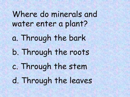 Where do minerals and water enter a plant? a. Through the bark b. Through the roots c. Through the stem d. Through the leaves.