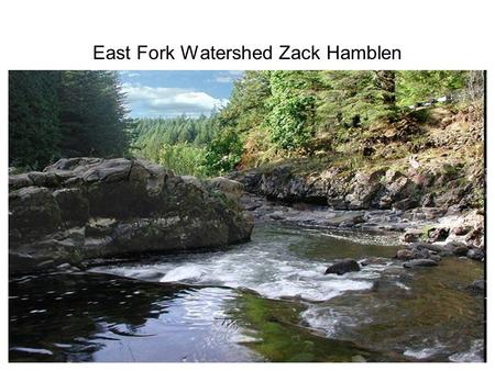 East Fork Watershed Zack Hamblen. Info about Lewis River watersheds 212 square miles in the area Comprised primarily of rural and forested land More than.