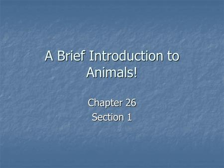 A Brief Introduction to Animals! Chapter 26 Section 1.