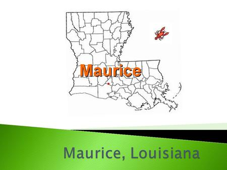 "Maurice, Louisiana is a small village in South Louisiana. Maurice is known as the Gateway to Vermilion Parish"". Look at the map. Can you find Vermilion."