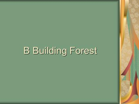 B Building Forest. Our forest was planted by the children of B Building in 1993 with donations from local nurseries.