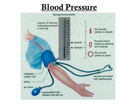 Blood Pressure. The Dangers of High Blood Pressure Medical term = hypertension. High BP= condition in which the pressure (tension) blood exerts on the.