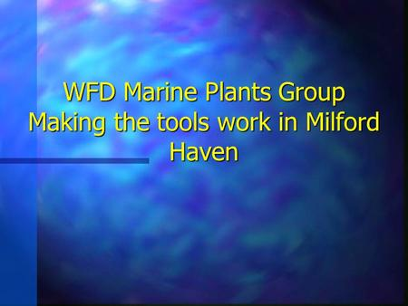 WFD Marine Plants Group Making the tools work in Milford Haven.