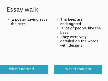 What I noticed… What I thought…  a poster saying save the bees  The bees are endangered  a lot of people like the bees  they were very detailed on.