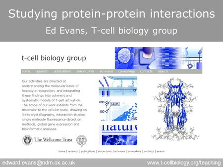 Studying protein-protein interactions Ed Evans, T-cell biology group.