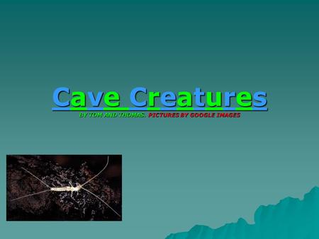 Cave Creatures BY TOM AND THOMAS. PICTURES BY GOOGLE IMAGES.