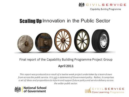 Scaling Up Innovation in the Public Sector Capability Building Programme Final report of the Capability Building Programme Project Group April 2011 This.