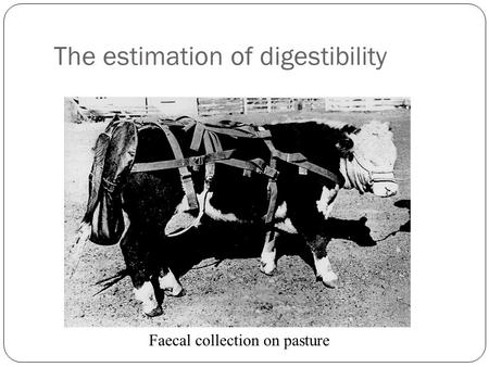 The estimation of digestibility Faecal collection on pasture.