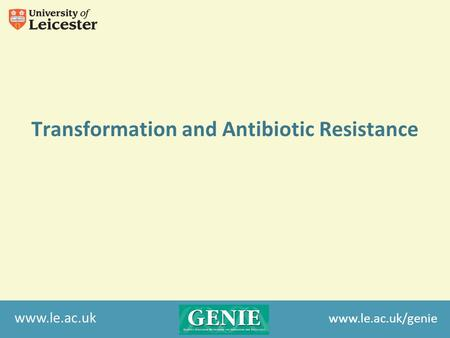 Www.le.ac.uk Transformation and Antibiotic Resistance www.le.ac.uk/genie.