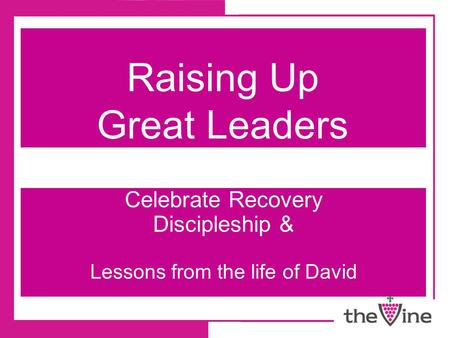 Raising Up Great Leaders Celebrate Recovery Discipleship & Lessons from the life of David.