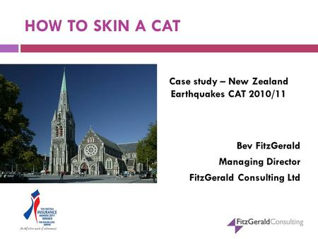 HOW TO SKIN A CAT Case study – New Zealand Earthquakes CAT 2010/11 Bev FitzGerald Managing Director FitzGerald Consulting Ltd.