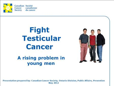 This grey area will not appear in your presentation. Fight Testicular Cancer A rising problem in young men Presentation prepared by: Canadian Cancer Society,