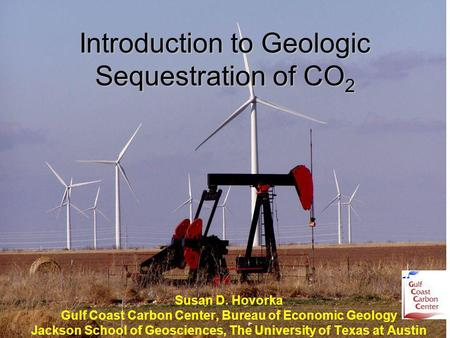 Introduction to Geologic Sequestration of CO 2 Susan D. Hovorka Gulf Coast Carbon Center, Bureau of Economic Geology Jackson School of Geosciences, The.