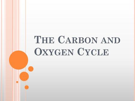 T HE C ARBON AND O XYGEN C YCLE. A FEW PROCESSES THAT CONTROL THE CARBON AND OXYGEN CYCLE : Photosynthesis-respiration cycle Burial of organic carbon.