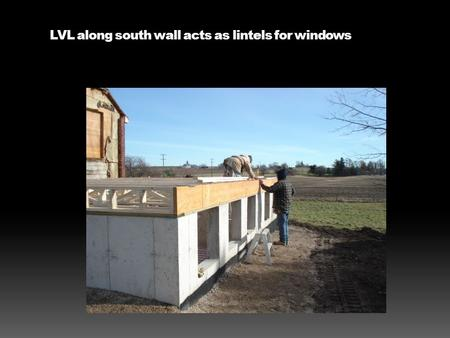 LVL along south wall acts as lintels for windows.