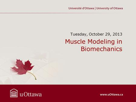 Muscle Modeling in Biomechanics Tuesday, October 29, 2013.
