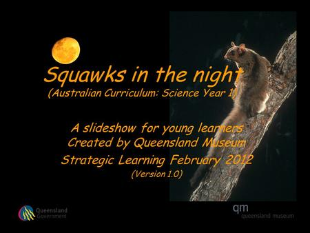 Squawks in the night (Australian Curriculum: Science Year 1) A slideshow for young learners Created by Queensland Museum Strategic Learning February 2012.
