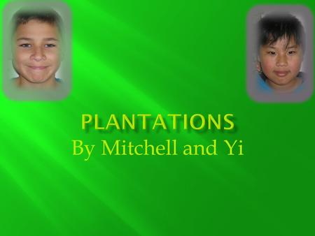 By Mitchell and Yi  Plantations are large farms where African Americans worked as slaves to plant crops.