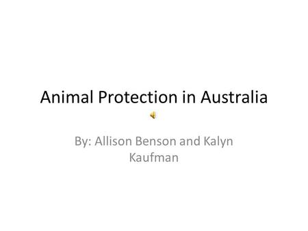 Animal Protection in Australia By: Allison Benson and Kalyn Kaufman.