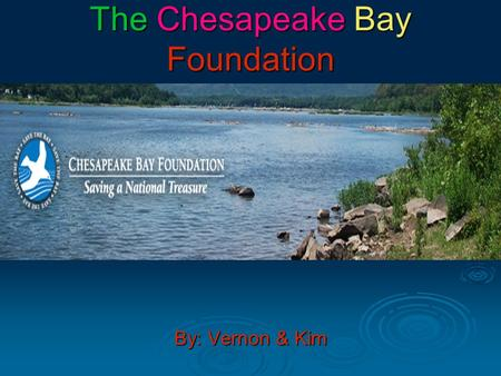 The Chesapeake Bay Foundation By: Vernon & Kim.  The Chesapeake Bay Foundation is supportive of the Clean up of the bay.  The CBF is for force a clean-up.