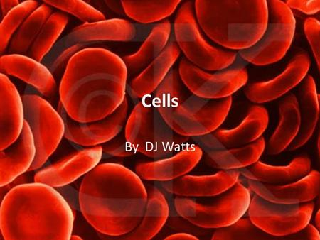 Cells By DJ Watts. The Cell Theory 1) All organisms are composed of one or more cells 2) Cells are the smallest unit of life 3) All cells come from pre-existing.