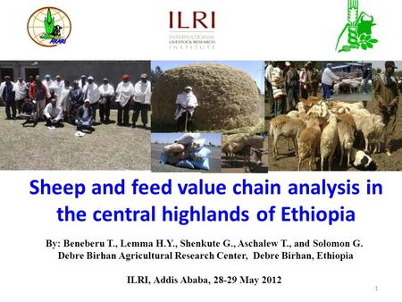 Sheep and feed value chain analysis in the central highlands of Ethiopia By: Beneberu T., Lemma H.Y., Shenkute G., Aschalew T., and Solomon G. Debre Birhan.