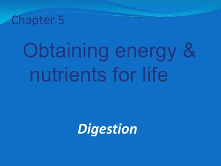 Chapter 5 Obtaining energy & nutrients for life Digestion.