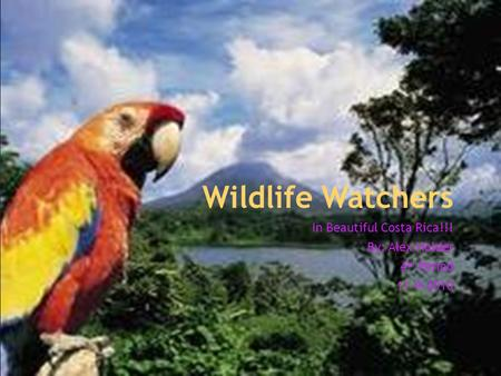 Wildlife Watchers In Beautiful Costa Rica!!! By: Alex Holder 4 th Period 11-9-2010.