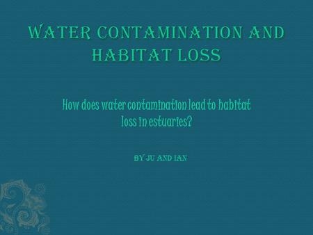 How does water contamination lead to habitat loss in estuaries? By Ju and Ian.