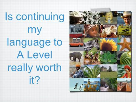 Is continuing my language to A Level really worth it?