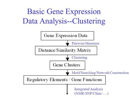 Basic Gene Expression Data Analysis--Clustering