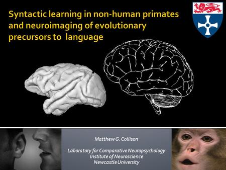 Matthew G. Collison Laboratory for Comparative Neuropsychology Institute of Neuroscience Newcastle University.