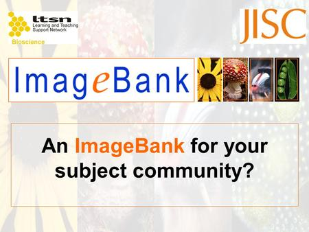 An ImageBank for your subject community?. Images are a powerful L & T tool.. The value of images in learning and teaching is well documented in the pedagogic.