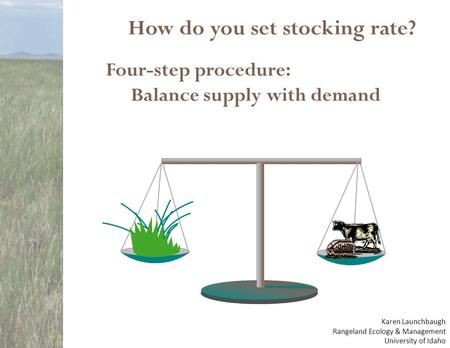 How do you set stocking rate? Four-step procedure: Balance supply with demand Karen Launchbaugh Rangeland Ecology & Management University of Idaho.