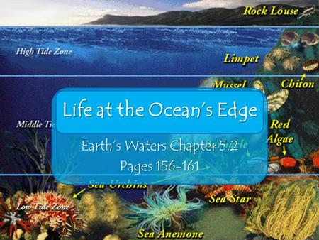 Life at the Ocean's Edge Earth's Waters Chapter 5.2 Pages 156-161.