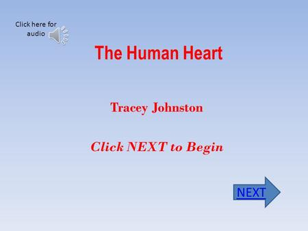 The Human Heart Tracey Johnston Click NEXT to Begin NEXT Click here for audio.