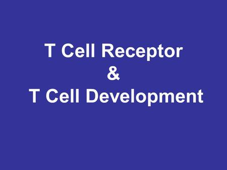 T Cell Receptor & T Cell Development