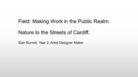 Sian Burnell, Year 2, Artist Designer Maker Field: Making Work in the Public Realm. Nature to the Streets of Cardiff.
