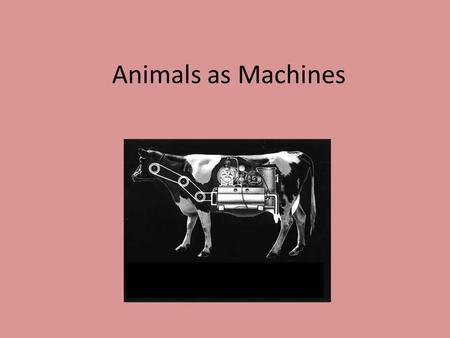 Animals as Machines. Descartes René Descartes (1596-1650 ) French philosopher, mathematician and scientist Discourse on Method (1637) Part 5 discusses.