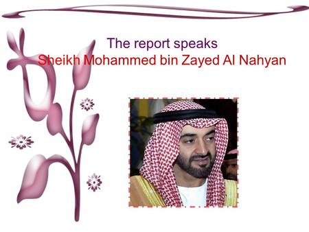 The report speaks Sheikh Mohammed bin Zayed Al Nahyan