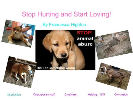 Stop Hurting and Start Loving! By Francesca Highton Introduction On purpose or not?Helping… NO!ConclusionCruelness.
