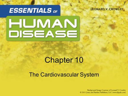 Chapter 10 The Cardiovascular System. Learning Objectives (1 of 2) Basic anatomy and physiology Causes, effects, and treatment –Congenital heart disease.