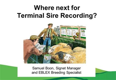 Where next for Terminal Sire Recording? Samuel Boon, Signet Manager and EBLEX Breeding Specialist.