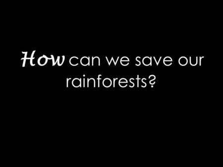 How can we save our rainforests?. Did you know that in the 4 seconds it took you to read this sentence a football pitch patch of rainforest has been destroyed..