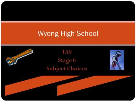 TAS Stage 6 Subject Choices