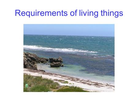 Requirements of living things. Cells exchange matter and energy In: Oxygen Nutrients eg glucose Water Ions Out: Carbon dioxide Wastes eg urea Water Ions.