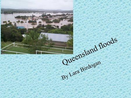 Queensland floods By Lara Birdogan. Contents My flood info Pictures from the floods My letter to Julia Gillard Impact on the community The End.