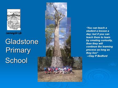 "Gladstone Primary Gladstone Primary School School "" You can teach a student a lesson a day; but if you can teach them to learn by creating curiosity, then."